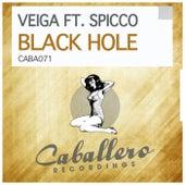 Black Hole by Veiga