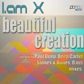 Beautiful Creation de IAMX