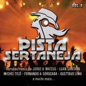 Pista Sertaneja 4 de Various Artists