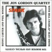Spark by Jon Gordon