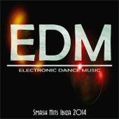Edm Smash Hits Ibiza 2014 by Various Artists