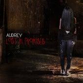 Lost in Promises de Audrey