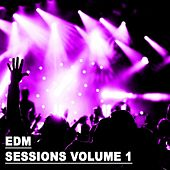 EDM Sessions Vol. 1 - EP de Various Artists
