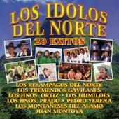 Los Ídolos del Norte: 20 Éxitos by Various Artists