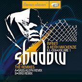 Shadow (2008 Remixes, Vol. 1) by Infiniti