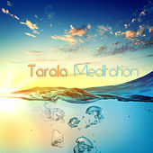 Tarala Meditation (Compiled by DJ MNX) by Various Artists