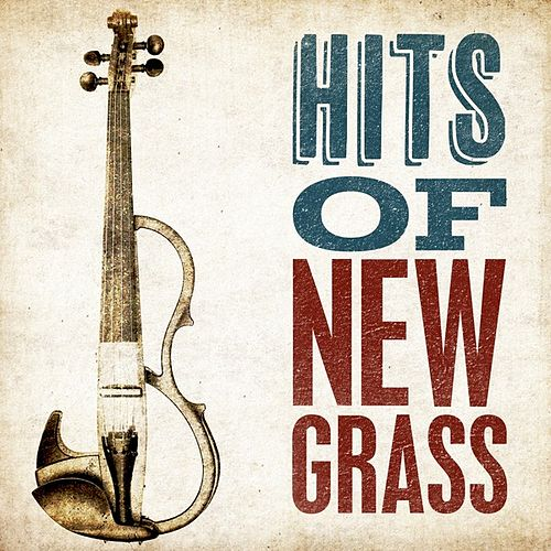 Hits of Newgrass by Various Artists
