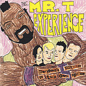 Everybody's Entitled to Their Own Opinion von Mr. T Experience