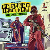 We Never Fear Dem - GTA5 - Single de VYBZ Kartel