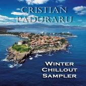 Winter Chillout Sampler de Various Artists