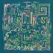 Juvenilia by The Verlaines