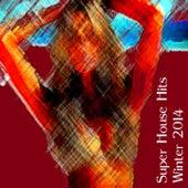 Super House Hits Winter 2014, Vol. 1 (The Best Dance Music from Ibiza, Miami, Barcelona, New York, Rimini, London) de Various Artists