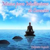 Música para Meditaciones de Curación de Relajacion Conjunto