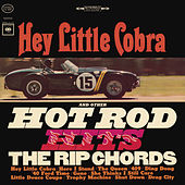 Hey Little Cobra de The Rip Chords