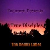 True Disciples (Vibrant Housemusic) - EP de Various Artists