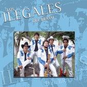 Destino de Mi Vida by Los Ilegales del Bravo