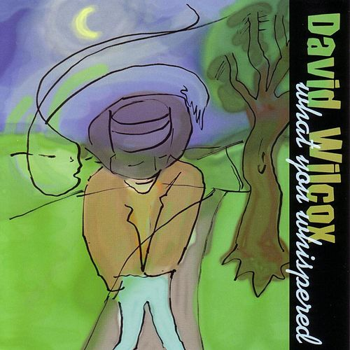 What You Whispered by David Wilcox