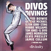 Divos Divinos (Version Audio) de Various Artists