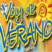 Voy de Verano by Various Artists