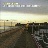Light of Day: A Tribute to Bruce Springsteen de Various Artists