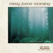 Misty Forest Morning by David and Steve Gordon