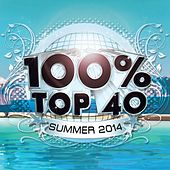 100% Top 40 Hits Summer 2014 by Audio Groove