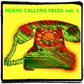 Miami Ibiza Calling, Vol. 1 (30 Hits Edm for Djs) by Various Artists