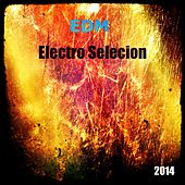 EDM Electro Selecion 2014, Vol. 1 by Various Artists