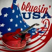 Bluesin' USA de Various Artists