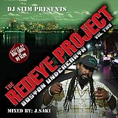 The Red Eye Project Vol.2 von Various Artists