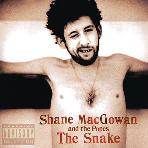 The Snake by Shane MacGowan