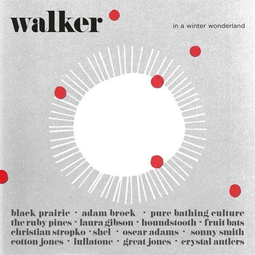 Walker in a Winter Wonderland by Various Artists