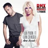 Ara Sıcak (Remixes) by Ajda Pekkan