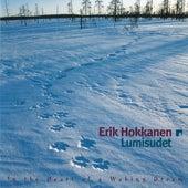 Lumisudet by Erik Hokkanen
