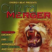 Cultural Merger, Vol. 5 by Various Artists