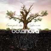 Canciones Para La Luna - Sinfónico En Vivo de Belanova