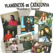 Flamencos en Catalunya