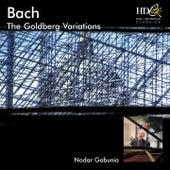 Bach (The Goldberg Variations) by Nodar Gabunia