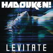 Levitate (Remixes) by Hadouken!