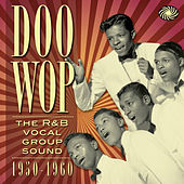 Doo Wop: The R&B Vocal Group Sound 1950 to 1960 de Various Artists
