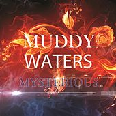 Mysterious de Muddy Waters