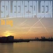 De Weg by Spleen2spleen