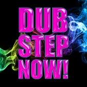 Dub Step Now! von Various Artists