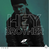Hey Brother de Avicii