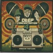 Deep Concentration Vol. 4 de Various Artists
