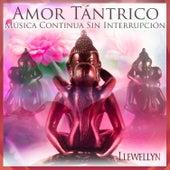 Amor Tántrico: Música Continua Sin Interrupción by Llewellyn