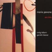 Arc Trio by Mario Pavone
