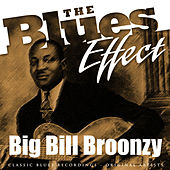 The Blues Effect - Big Bill Broonzy de Big Bill Broonzy