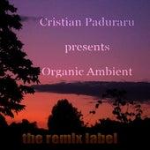 Organic Ambient (Progressive Chillout Music Album for Christmas Season) de Various Artists