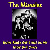 You've Really Got a Hold on Me de The Miracles